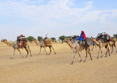 chad-nomads-United-Nations-Attribution-NonCommercial-ShareAlike