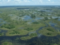 botswana-okavango-delta-justin-hall-attribution