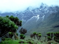 ruwenzori-uganda-nick06-attribution-share-alike