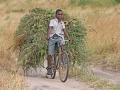 tanzania-bicycle-muhammad-mahdi-karim-attribution-share-alike0